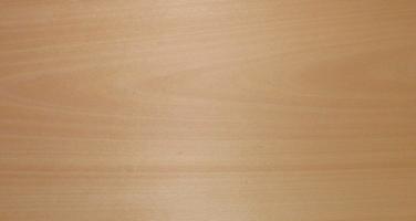linoleumplatte Profi a4 espesor 3,2 mm 60,13 €//m²